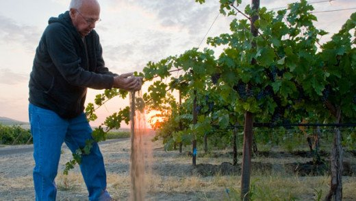 WineryWise™ Supports Best Practices in Sustainability