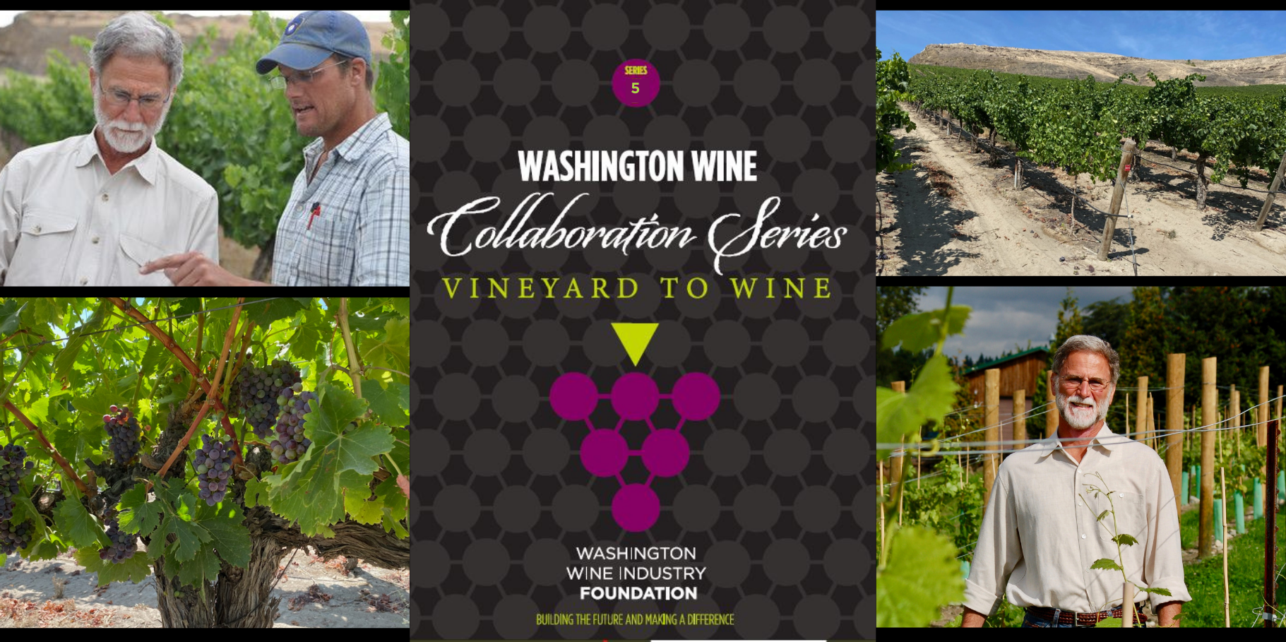 Washington Wine Collaboration Series #6 label + picture of winegrapes, vineyard, and winemaker collaborating with grower