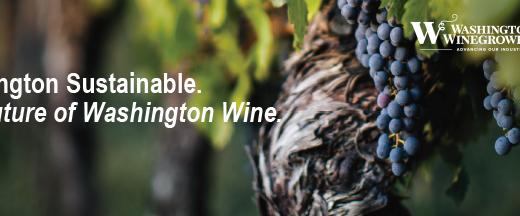 Washington Sustainable. The future of Washington wine.