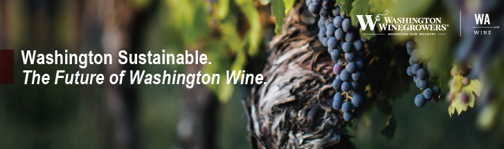 Washington Sustainable. The future of Washington wine.